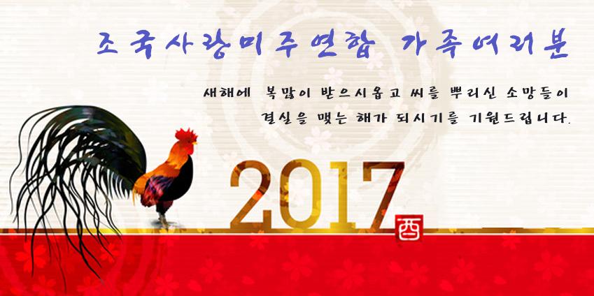 happy_new-year2017.jpg
